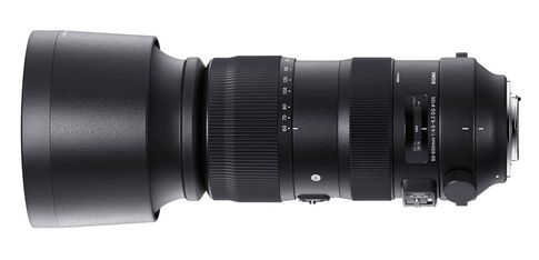 Sigma 60-600mm F4.5-6.3 DG OS HSM | Sports