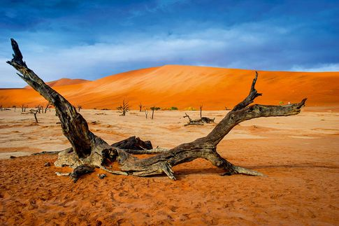 """Lumix Photo Adventure Namibia"" ab Februar 2017"