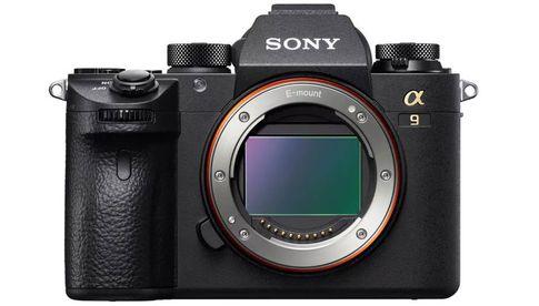 Firmware-Update für Sony A9 Das Auge des Tigers