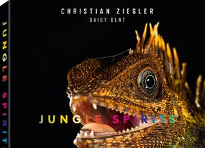 Christian Ziegler: Jungle Spirits