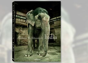 Andreas H. Bitesnich: India