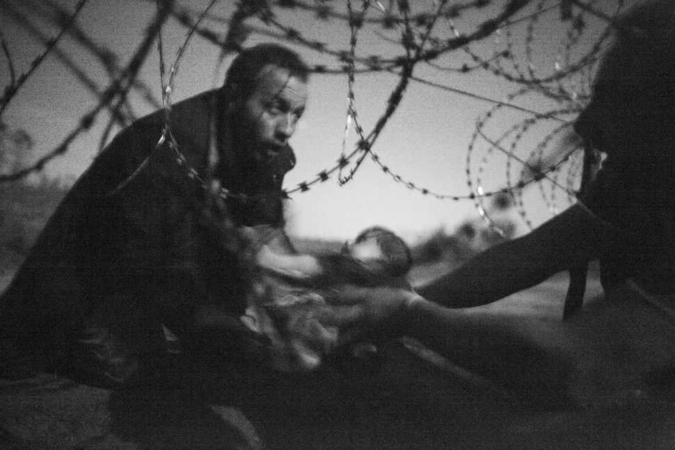 World Press Photo of the Year © Warren Richardson, Australien, 2015. Titel: Hope for a new life.