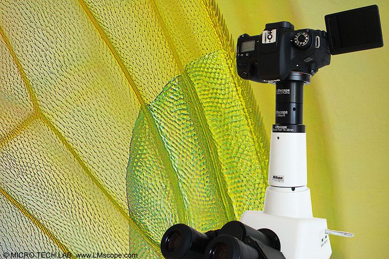 Sony cyber shot dsc rx i zeiss digitalkamera megapixel in